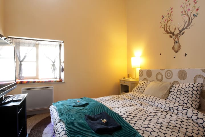 Cosy room in the mid-center of Carcassonne. - Carcassonne - Apartemen