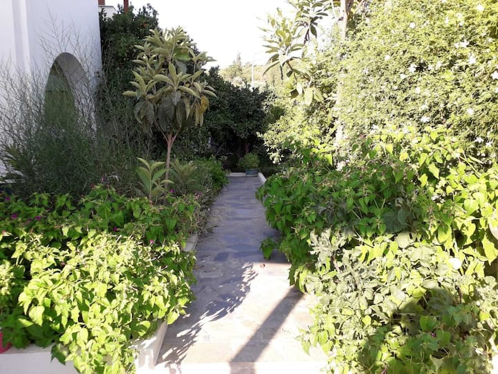 Maroulis garden