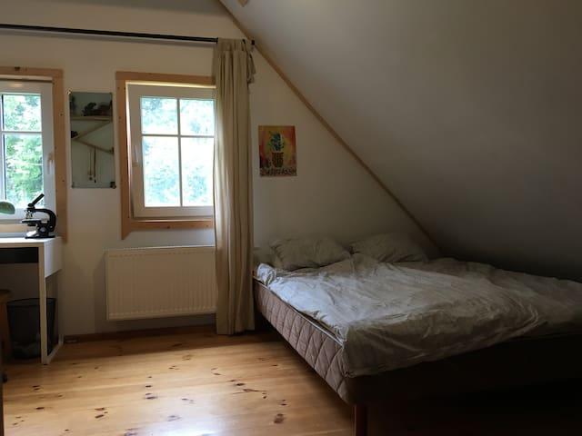 Jaukus kambarys gamtos apsupty