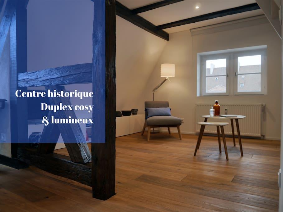 Zum guat lawa duplex cosy au c ur de colmar for Appartement atypique colmar