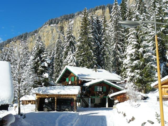 Location de skis aux pieds des pistes d'avoriaz .