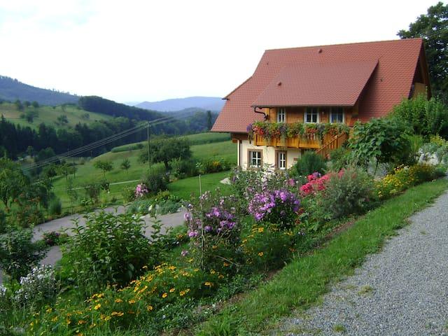 Kleine Dachwohnung zum kuscheln und entspannen