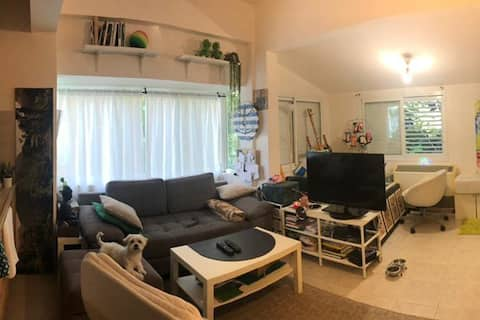 nice  studio in the  heart of TLV