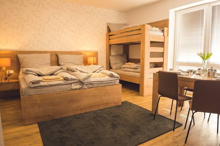 Štúdiový apartmán pre 4 osoby - Vila Anna