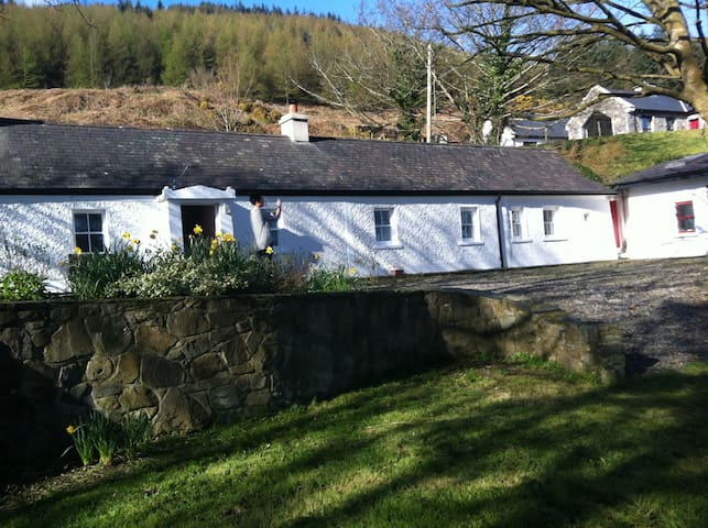 Wildrose Cottage - Carlingford - Casa