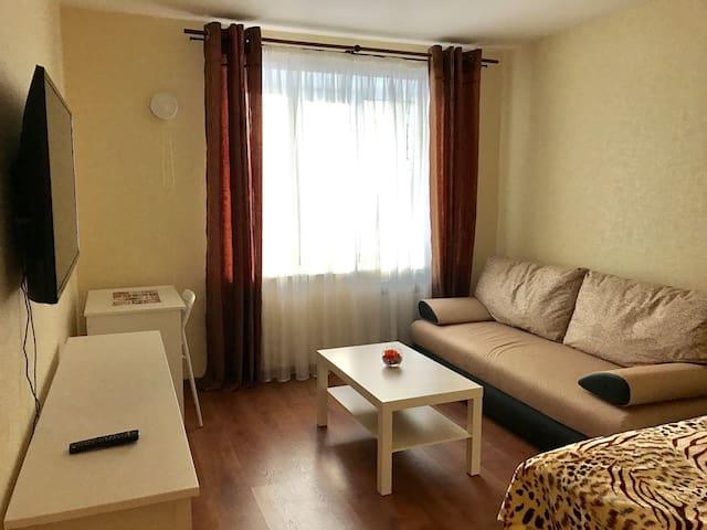 Уютная квартира в Вологде Germini flat in Vologda - Vologda - Lägenhet