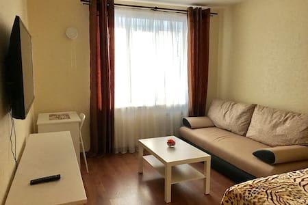 Уютная квартира в Вологде Germini flat in Vologda - Vologda - Daire