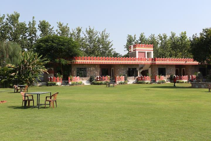 Deluxe Cottages at Resort in Pushkar 5 - Pushkar - Naturstuga