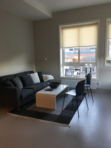 Studioleilighet Drammen sentrum. - 德拉門(Drammen) - 公寓