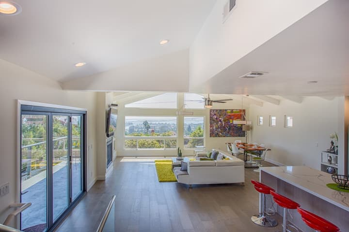 Stunning Contemporary in Pacific Beach