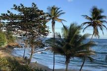 Petit L'Anse Beach Rampanalgas