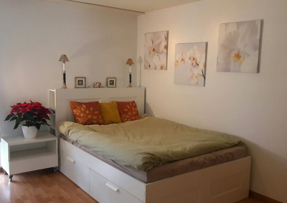 Your room for a nice and comfy stay in Bern (Kanton). The room is app. 15m2, has a window that could be opened and a view to the meadow and other buildings in the street. A lot of space for a guest bed. The double bed is 140 x 200 cm.