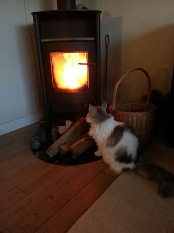Katten Alfrida og Rais brændeovn