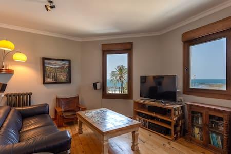 One of the best views in Cádiz.