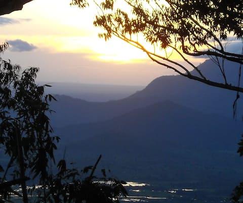 Explore the beautiful East Usambara Mountains