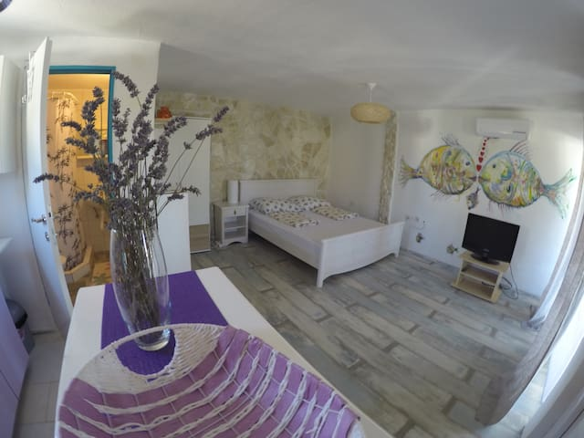 Salvia Studio - Split-Dalmatia County - Apartment
