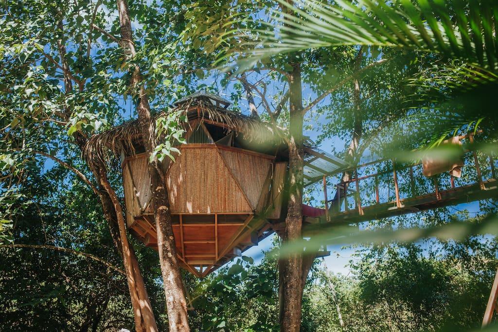 Sacred geome tree house casas en el rbol en alquiler en for Alquiler casa arbol