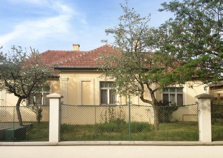 Suburban Villa at the gates of Budapest