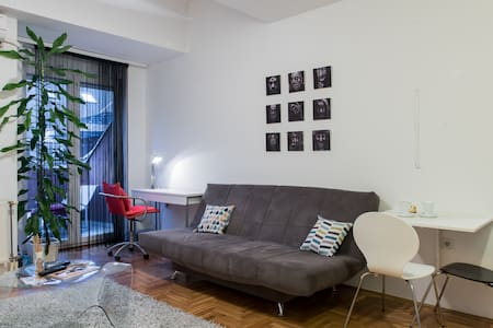 Cozy, bright & centrally located apartment+parking - 諾維薩德