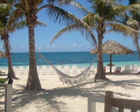 Christmas in Bahamas at The Marlin, Taino Beach