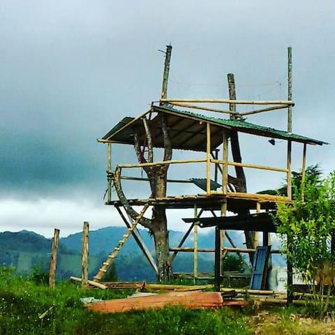 Casa del árbol ecoturismo