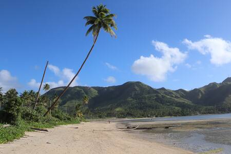 Bui's homestay in Kadavu with breakfast and dinner