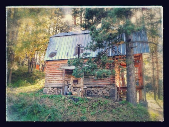 Cabin in the mountain forest - Almaty - Cabin