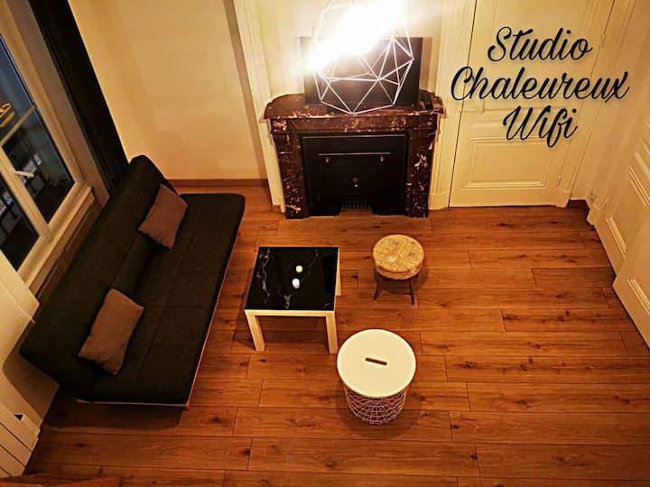 ★La Croisade-Studio-Hyper centre Tassin- Suite 1★