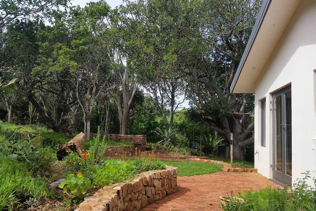 Back of the house with lounge doors leading to braai circle and children's' play area