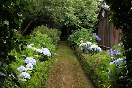 Azores Green Villas T0 - S. Vicente Ferreira - Cabin