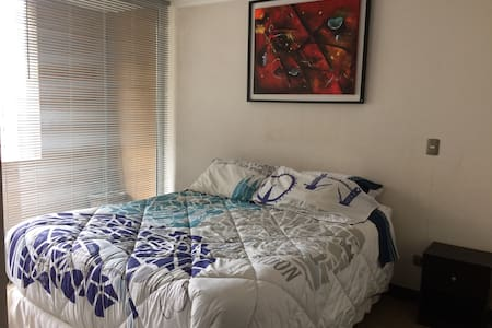 Apartamento Solo en Concepción - Concepción