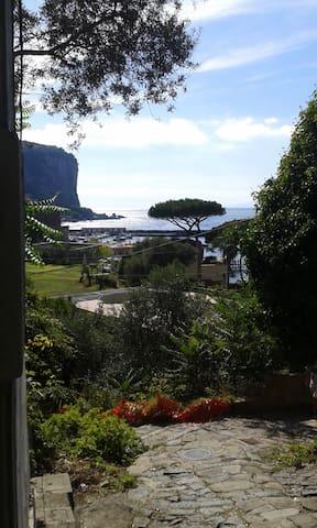 Delizioso appartamento tra verde, mare e quiete - Vico Equense - Flat
