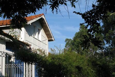 Original 1913 Portuguese House 4 - Covas - Bed & Breakfast