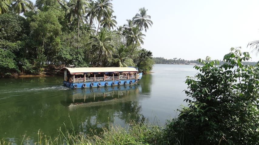 You can a boat ride with a nice local lunch ( sadhya) with locally grown fish fry.