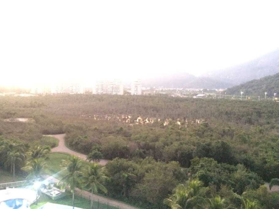 Jungle (protected area) and Olympic Park