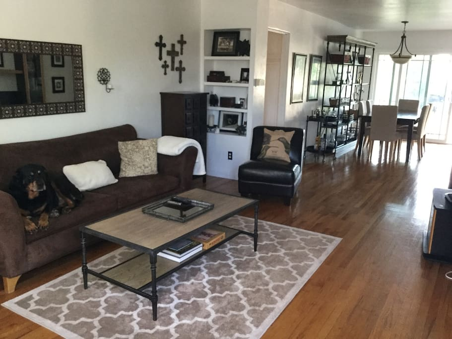 Pet friendly living and dining room. The couch is a sofa bed.
