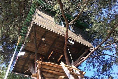 Casa del Árbol en Quetzaltenango - Quetzaltenango  - バンガロー