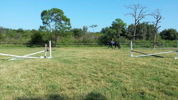 Peaceful stay on 36-acre horse farm