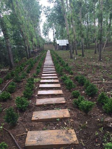 为你的肺换换新鲜空气吧,欢迎入住天然氧吧---红豆杉庄园 - Jilin Shi - วิลล่า