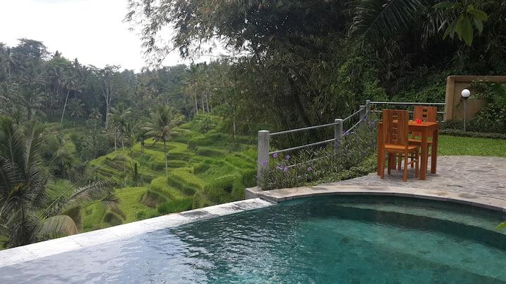 Villa Wedang Family room