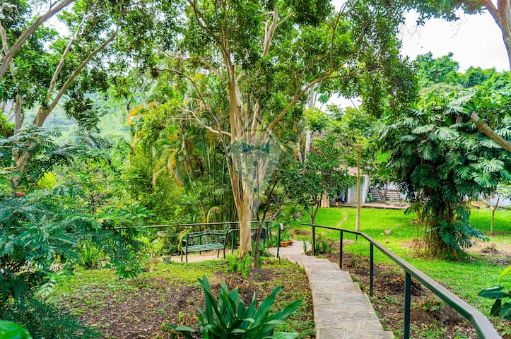 San Juancito- Relaxing Huge House with Open Spaces