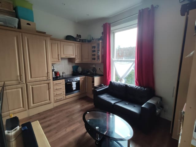 Heart of Ranelagh and Dublin City - Studio Apt.