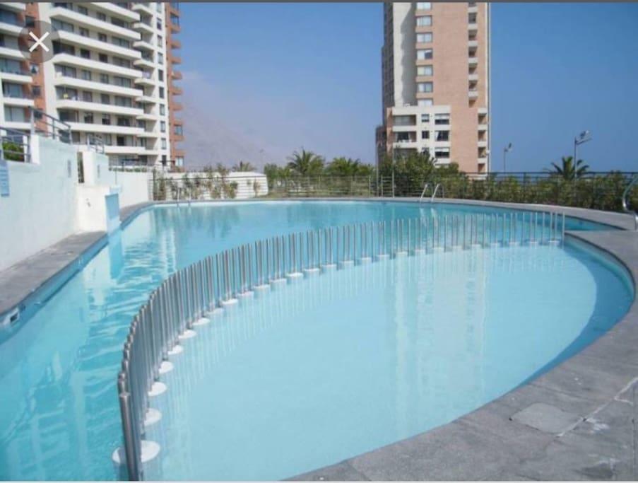 Una de las piscinas del Condominio, con división de profundidad para los más pequeños, cuenta con resposeras y silla para tomar sol.