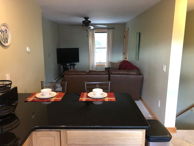 Granite/Stainless Eat-in Kitchen with adjoining Living Area and additional closet-space.