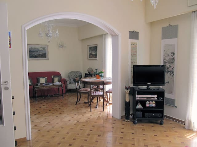 Spacious apartment, central Athens - Athina - Apartamento