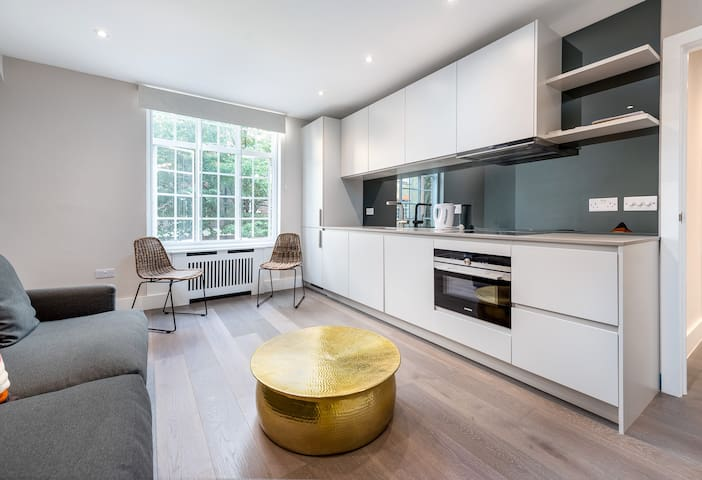 Fantastic Modern One Bedroom Flat in Chelsea - MC