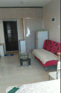 精装修设施齐全 热水器 冰箱  洗衣机 双人床 沙发 拎包入住 - Jiamusi Shi