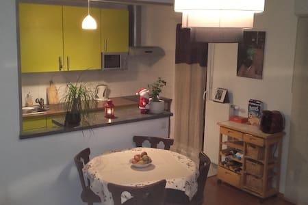 Joli appartement F3 dans quartier calme 5mn centre - Colmar - Huoneisto