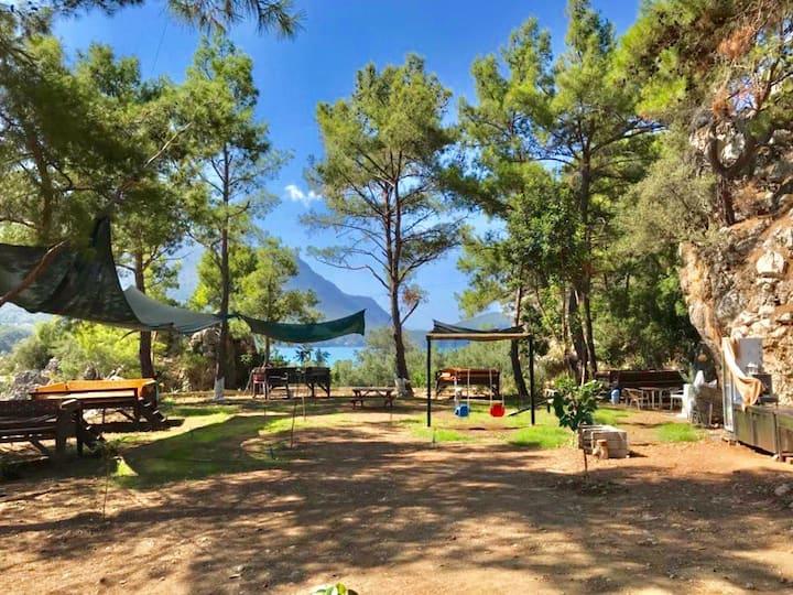 Antalya Karaöz Koyu - Orman İçi Bungalow