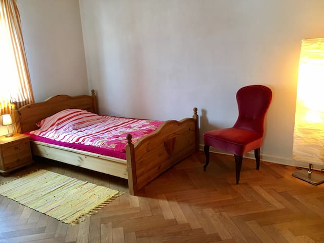 Cosy room in Giessen with familiy conversation - Gießen - Casa